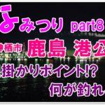 【なみつり】鹿島港公園で釣り!根掛かりゾーン攻略方法とは?
