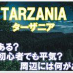 ターザニアは何がある?初めてでも楽しめるのか?周辺情報も!