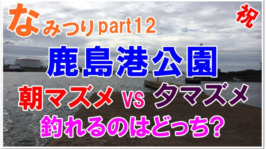 【なみつり】鹿島港公園で釣り!朝と夕どっちが魚が釣れるの?