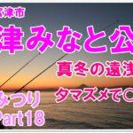 【なみつり】富津みなと公園釣り!真冬の遠浅の海何が釣れる?