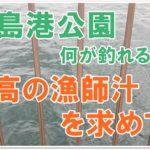 鹿島港公園で釣り!今までで一番の美味しい漁師汁を求めて!