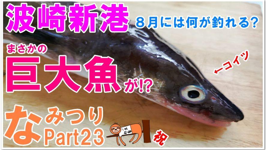 【なみつり】波崎新港で釣り!8月釣果は?まさかの巨大魚が!?